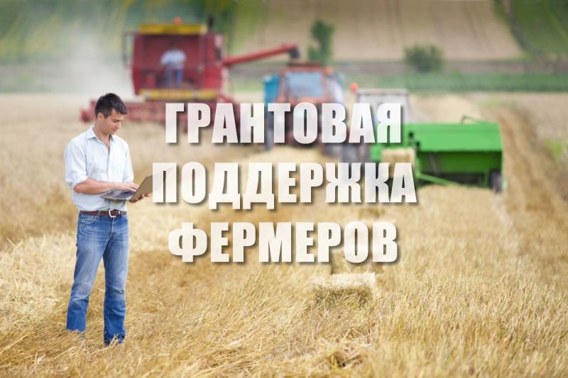 ГРАНТОВАЯ ПОДДЕРЖКА ФЕРМЕРОВ